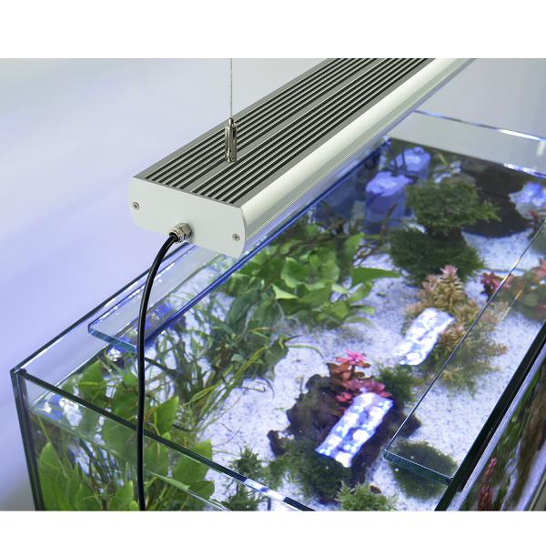 LED Grow Light - Pflanzen LED 6.500 K - STAR PLANT
