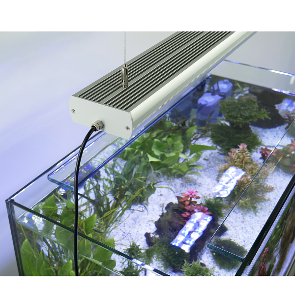 Aquarium LED Grow Light - daylight 6.500 K - STAR PLANT CREE