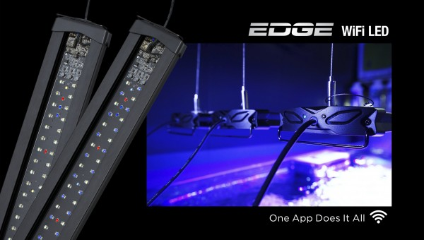 Edge Wifi LED Beleuchtung - Meerwasser + App Control